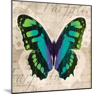 Butterflies II-Tandi Venter-Mounted Art Print