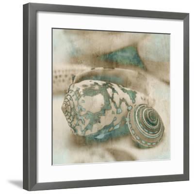 Coastal Gems I-John Seba-Framed Art Print
