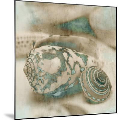 Coastal Gems I-John Seba-Mounted Art Print