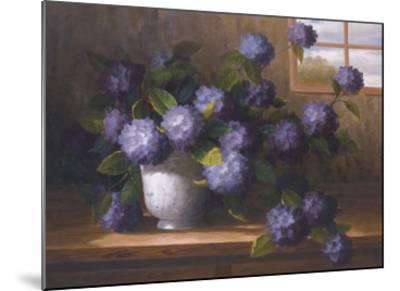 Hydrangea Blossoms II-Welby-Mounted Art Print