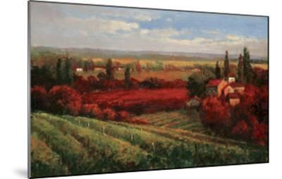 Tuscan Fields of Red-Matt Thomas-Mounted Art Print