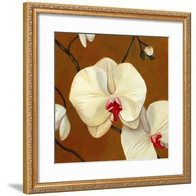 Orquideas Blancas I-Clunia-Framed Art Print