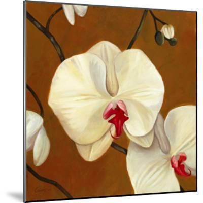 Orquideas Blancas I-Clunia-Mounted Art Print