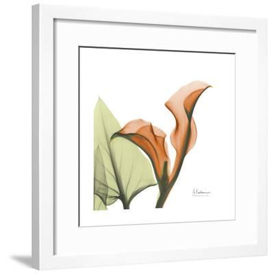 A Gift of Calla Lilies in Orange-Albert Koetsier-Framed Art Print