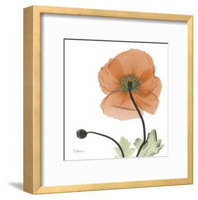 A Gift of Flowers in Orange-Albert Koetsier-Framed Art Print