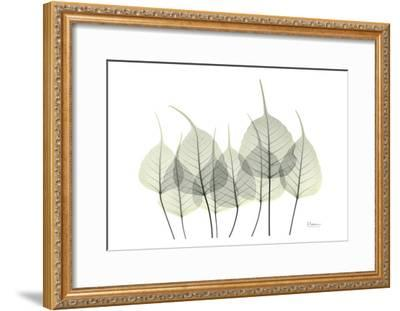 Bodhi Tree in Bloom-Albert Koetsier-Framed Art Print