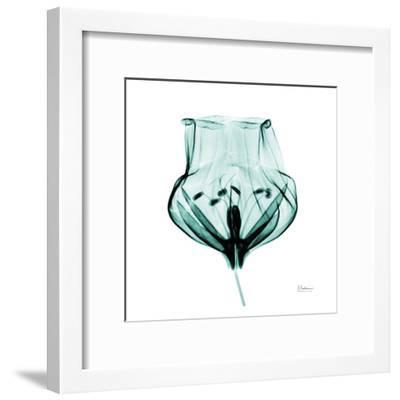 Gracious Green Bulb II-Albert Koetsier-Framed Art Print