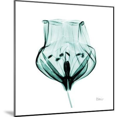Gracious Green Bulb II-Albert Koetsier-Mounted Art Print
