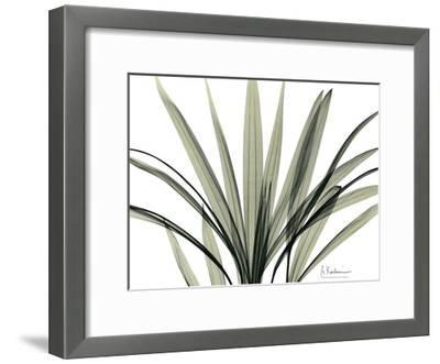 Mini Palm Tree-Albert Koetsier-Framed Art Print