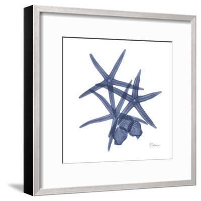 Sea Life in Blue-Albert Koetsier-Framed Art Print
