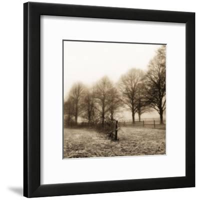 Fence Row and Trees-Harold Silverman-Framed Art Print