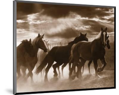 Running Horses and Sunbeams-Monte Nagler-Mounted Art Print