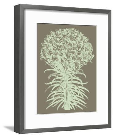 Lilies, no. 12--Framed Art Print