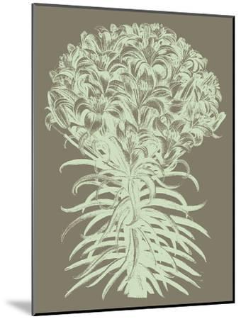 Lilies, no. 12--Mounted Art Print