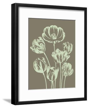 Tulip, no. 12--Framed Art Print