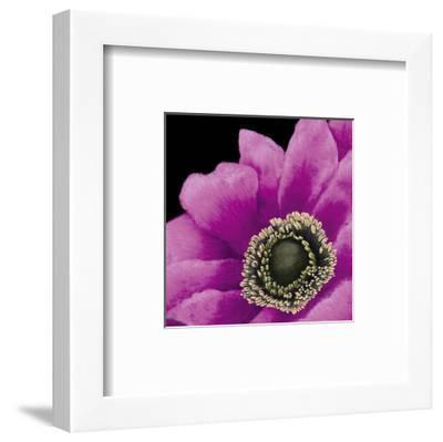 Brilliant Blooms II-Linda Wood-Framed Art Print