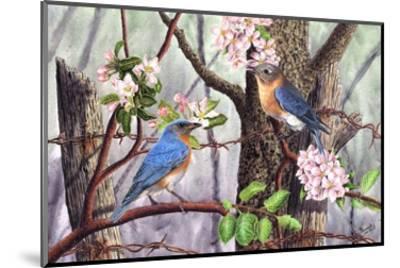 Bluebirds-Al Dornish-Mounted Art Print