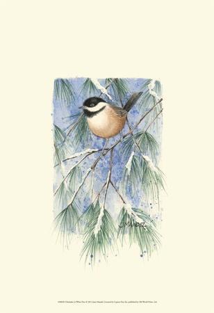 Chickadee in White Pine-Janet Mandel-Art Print