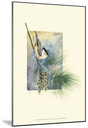 Nuthatch and Pine-Janet Mandel-Mounted Art Print