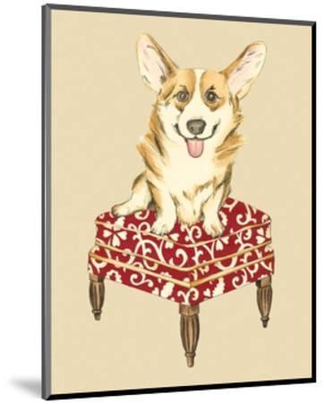 Pampered Pet III-Chariklia Zarris-Mounted Art Print
