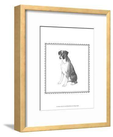 Best in Show XI-Megan Meagher-Framed Art Print