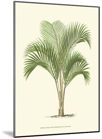 Coastal Palm I--Mounted Art Print