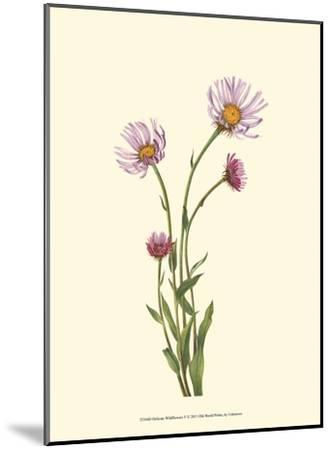 Delicate Wildflowers V--Mounted Art Print