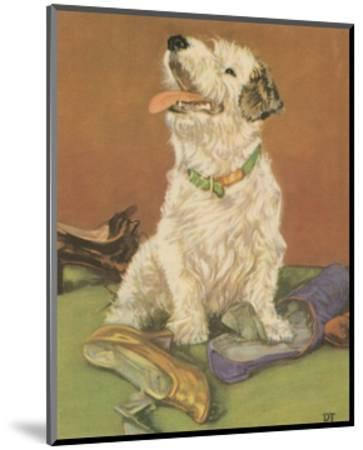 Terrier Trouble III--Mounted Art Print