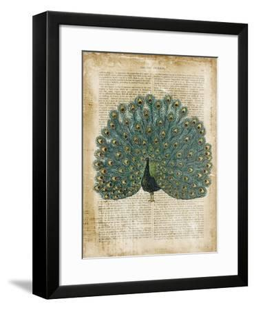 Antiquarian Birds V--Framed Giclee Print