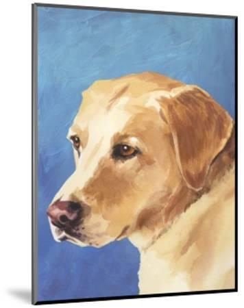 Dog Portrait, Yellow Lab-Jill Sands-Mounted Art Print
