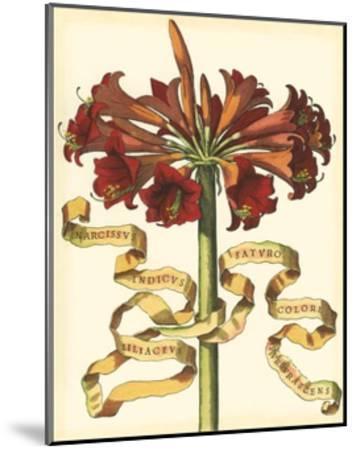 Ribbon Florals I--Mounted Art Print