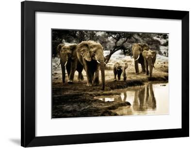 Cool of the Evening-Bobbie Goodrich-Framed Art Print