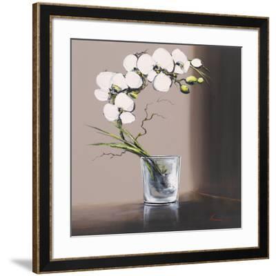 Swirls of White Orchids I-Olivier Tramoni-Framed Art Print