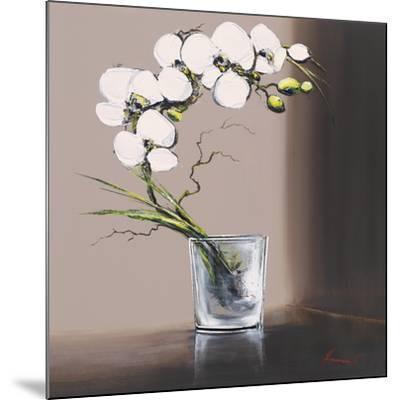 Swirls of White Orchids I-Olivier Tramoni-Mounted Art Print
