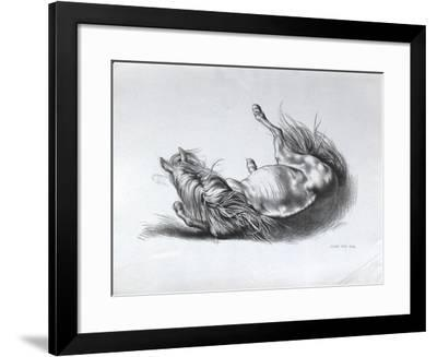 Cheval couché-Akos Szabo-Framed Premium Edition