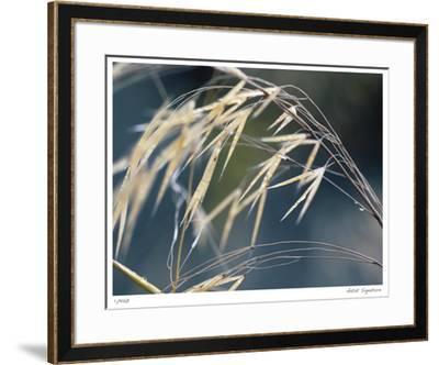 River Grasses II-Joy Doherty-Framed Giclee Print