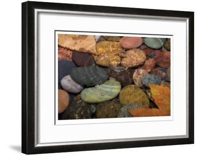 Splash in a Stream-Donald Paulson-Framed Giclee Print