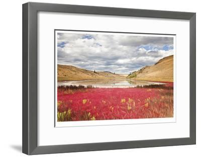 Lac Du Bois Grasslands Park I-Donald Paulson-Framed Giclee Print