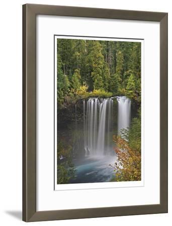 Koosah Falls-Donald Paulson-Framed Giclee Print