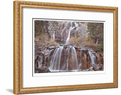 Tangle Falls II-Donald Paulson-Framed Giclee Print
