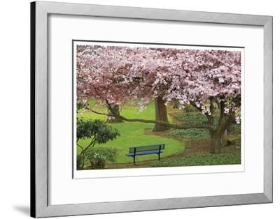 Evergreen Park-Donald Paulson-Framed Giclee Print