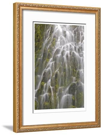 Proxy Falls III-Donald Paulson-Framed Giclee Print