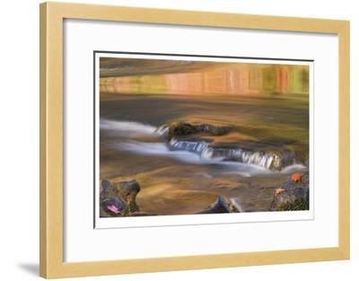Rogue River Reflections II-Donald Paulson-Framed Giclee Print