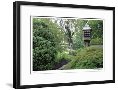 Birds and Path-Stacy Bass-Framed Giclee Print