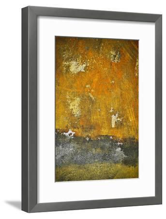 Rusty Look II-Jean-Fran?ois Dupuis-Framed Art Print