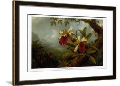 Orchids and Hummingbirds-Martin Johnson Heade-Framed Art Print