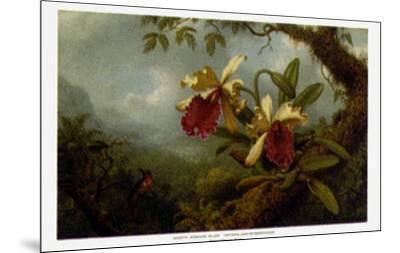 Orchids and Hummingbirds-Martin Johnson Heade-Mounted Art Print