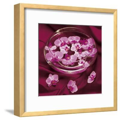 Orchidee et Eau-Amelie Vuillon-Framed Art Print