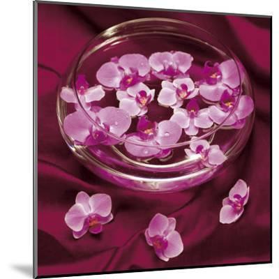 Orchidee et Eau-Amelie Vuillon-Mounted Art Print