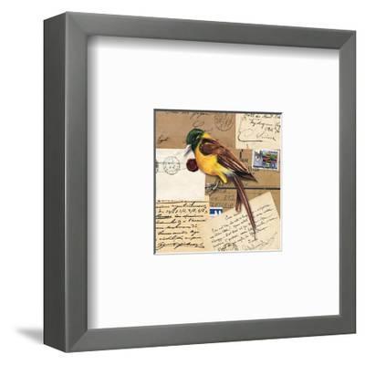 Birds Letters VII--Framed Art Print